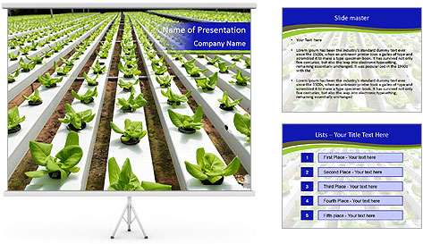 0000079724 PowerPoint Template
