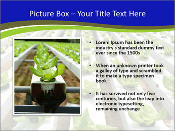 0000079724 PowerPoint Template - Slide 13