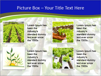 0000079724 PowerPoint Template - Slide 14