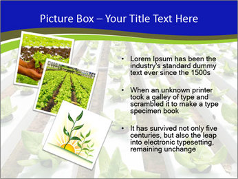 0000079724 PowerPoint Template - Slide 17