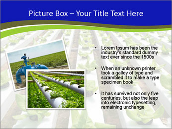 0000079724 PowerPoint Template - Slide 20
