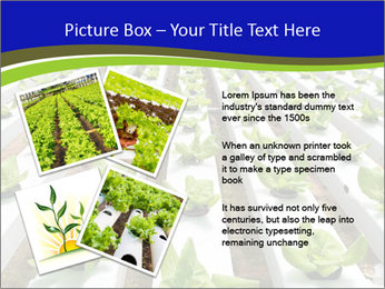 0000079724 PowerPoint Template - Slide 23