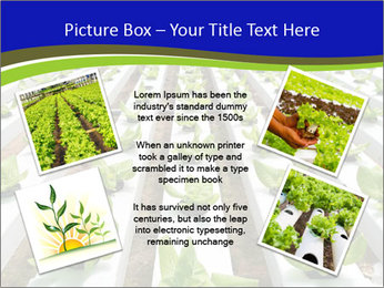 0000079724 PowerPoint Template - Slide 24