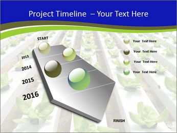 0000079724 PowerPoint Template - Slide 26