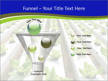 0000079724 PowerPoint Template - Slide 63