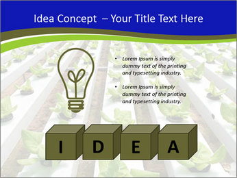 0000079724 PowerPoint Template - Slide 80