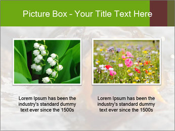 0000079734 PowerPoint Template - Slide 18