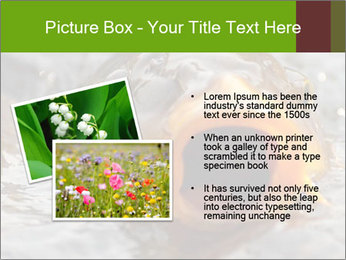 0000079734 PowerPoint Template - Slide 20