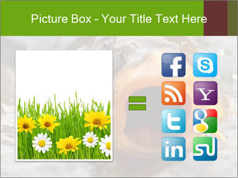 0000079734 PowerPoint Template - Slide 21