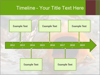 0000079734 PowerPoint Template - Slide 28