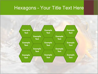 0000079734 PowerPoint Template - Slide 44