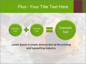 0000079734 PowerPoint Template - Slide 75