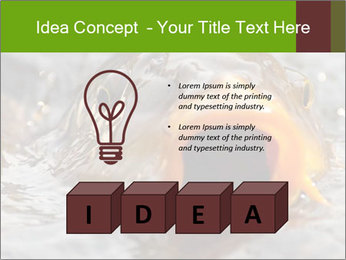 0000079734 PowerPoint Template - Slide 80
