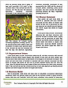 0000079734 Word Templates - Page 4