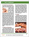 0000079735 Word Template - Page 3