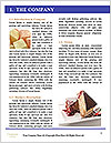 0000079737 Word Template - Page 3