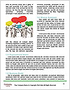 0000079740 Word Template - Page 4