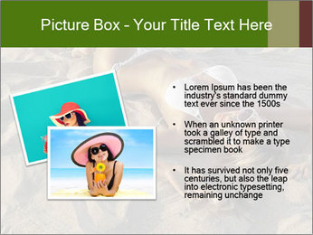 0000079754 PowerPoint Templates - Slide 20