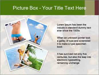 0000079754 PowerPoint Templates - Slide 23