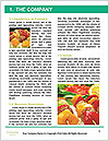 0000079763 Word Template - Page 3