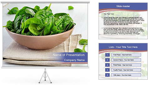 0000079764 PowerPoint Template