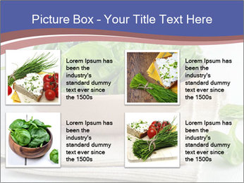0000079764 PowerPoint Template - Slide 14