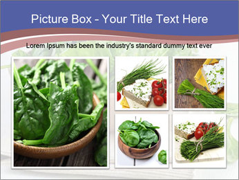 0000079764 PowerPoint Template - Slide 19