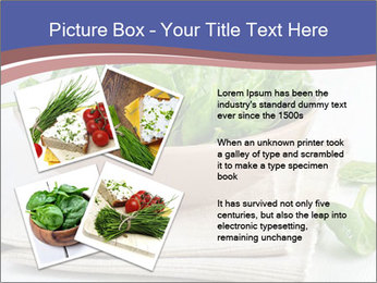 0000079764 PowerPoint Template - Slide 23