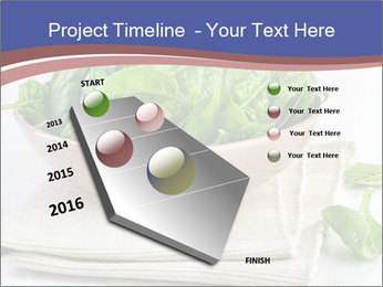 0000079764 PowerPoint Template - Slide 26
