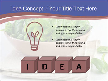 0000079764 PowerPoint Template - Slide 80