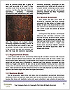 0000079769 Word Templates - Page 4