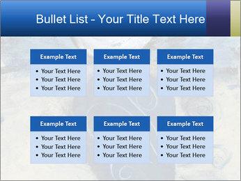 0000079778 PowerPoint Templates - Slide 56