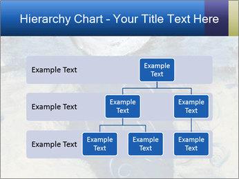 0000079778 PowerPoint Templates - Slide 67