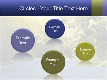 0000079779 PowerPoint Templates - Slide 77