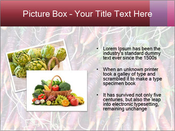 0000079782 PowerPoint Templates - Slide 20