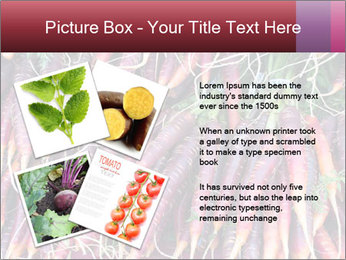 0000079782 PowerPoint Templates - Slide 23