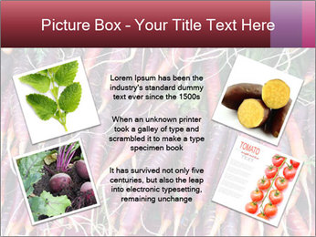 0000079782 PowerPoint Templates - Slide 24