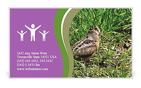 0000079784 Business Card Templates