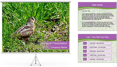 0000079784 PowerPoint Template