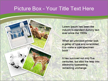 0000079784 PowerPoint Templates - Slide 23
