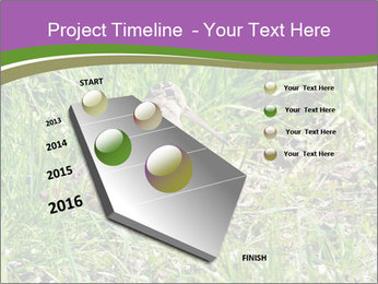 0000079784 PowerPoint Template - Slide 26