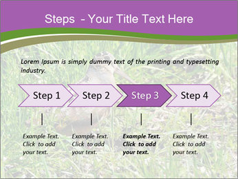 0000079784 PowerPoint Template - Slide 4