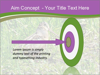0000079784 PowerPoint Template - Slide 83