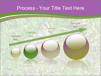 0000079784 PowerPoint Template - Slide 87