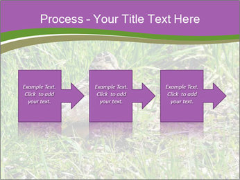 0000079784 PowerPoint Template - Slide 88