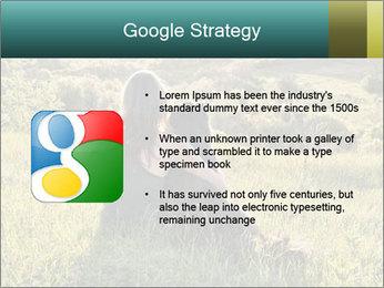 0000079789 PowerPoint Template - Slide 10