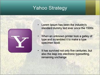 0000079789 PowerPoint Template - Slide 11