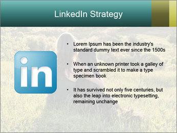 0000079789 PowerPoint Template - Slide 12