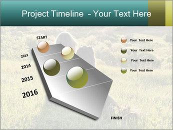 0000079789 PowerPoint Template - Slide 26