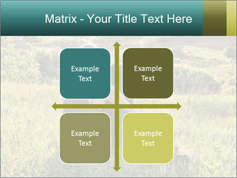 0000079789 PowerPoint Template - Slide 37